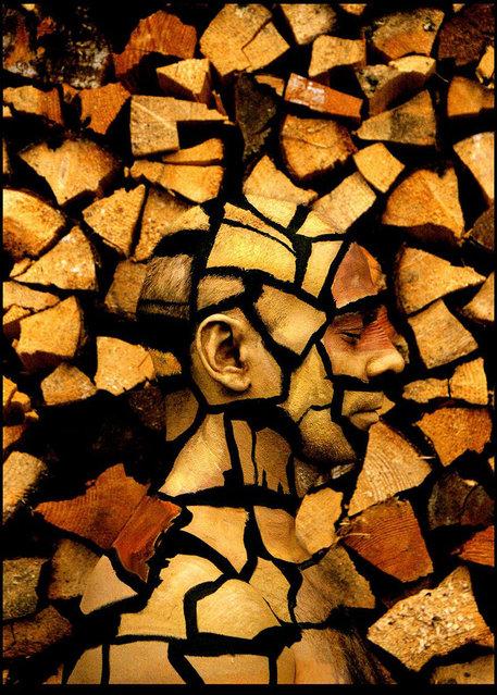 Desechos_de_madera