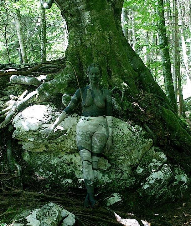Otoño_en_el_bosque