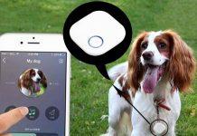 sensor bluetooh mascotas