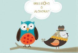 Buho_alondra-506x285